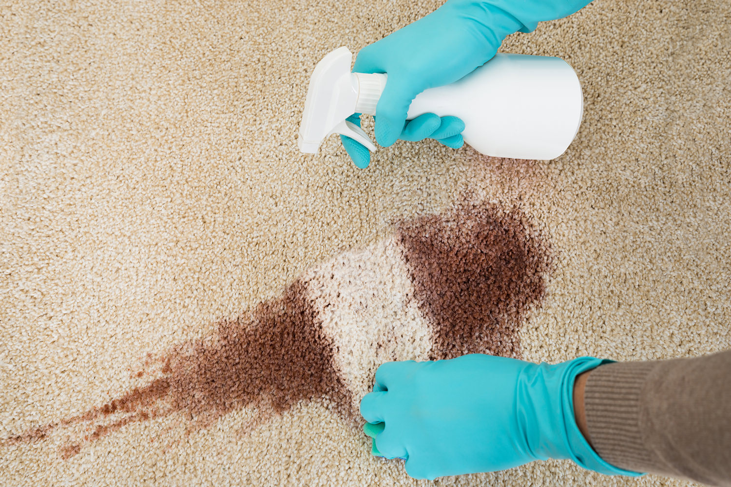 blog-how-to-clean-a-rug